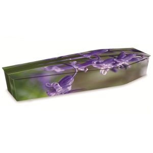 Picture Coffins -